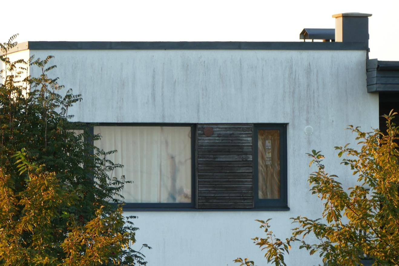 Fassaadikate, laudis, puitribid, seinakate